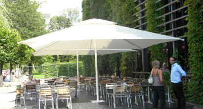 Trädgården i Göteborg köpte flera stora parasoller