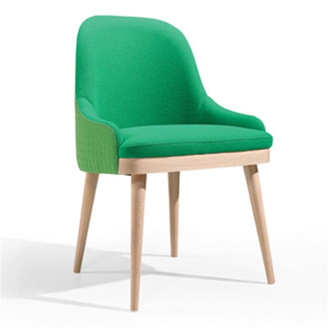 FE-Kelly-Den-stol-grön-bok